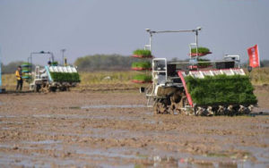machines working at unmanned farm in shanghai