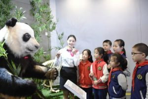 children with guide at panda museum in china