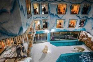top view inside polar bear hotel in harbin, china