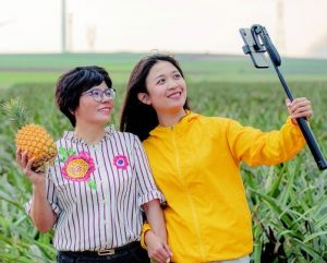 two women recording in field with pineapple